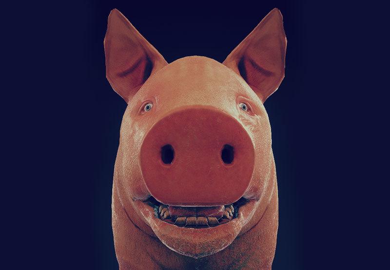 20160212152310-piggy-2
