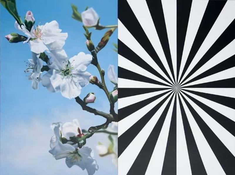 Almond-blossom-4984