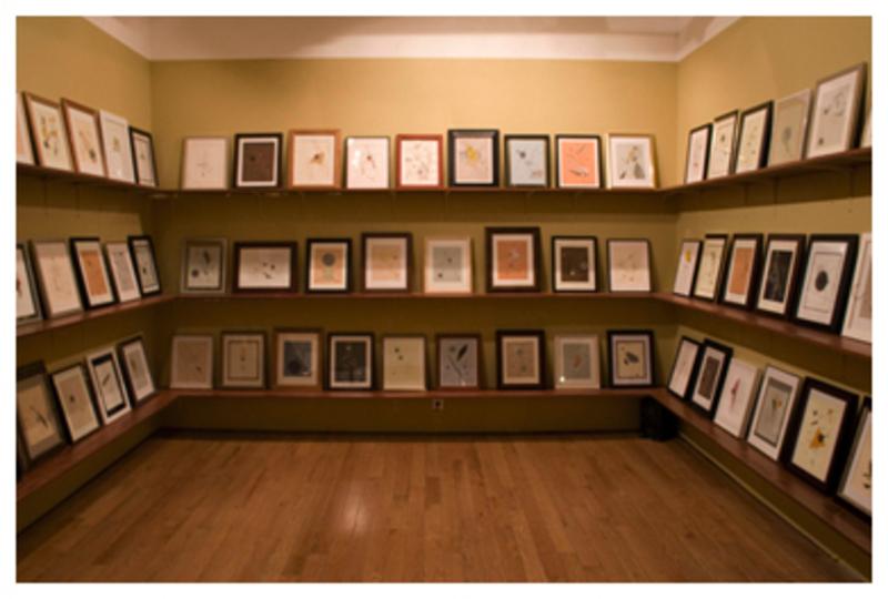 Tegeder_2009web_installation_06_library