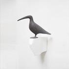W40_oiseau