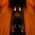 Dark-angel-8x11