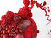 20110110132748-reddetail