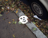 Paper_plate_face