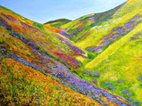 20130205195219-springtime__southern_california