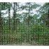 20140315223037-forestdark1