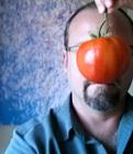 20160210182207-bio-pic-tomato_2016