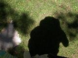 20101123073928-shadow