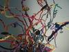 20120225032830-chenille