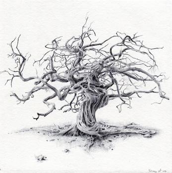 20160816205031-tree70_72dpi