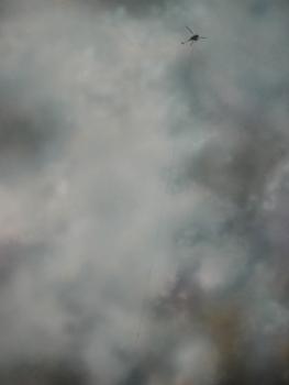 Samantha_fields__aurora_ne_2006__acrylic_on_canvas__42x24in