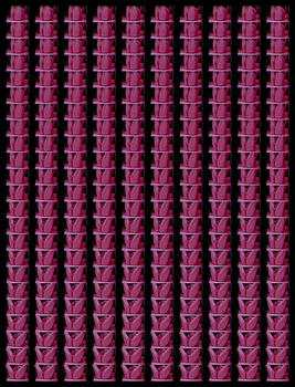 20160920140752-antoine_d_agata-pink-2016-courtesygalerielesfillesducalvaire