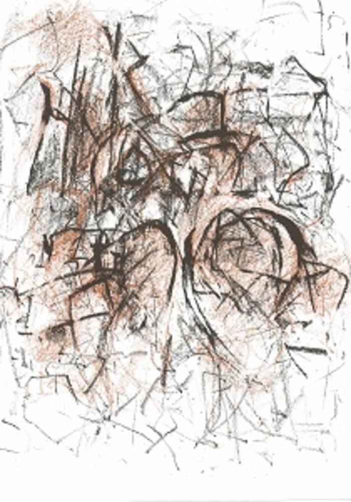 20160930165758-joan_mitchell_meditations_in_an_emergency_-_copy