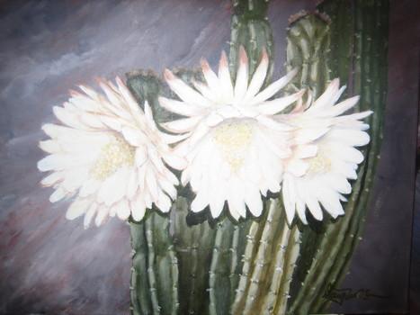 20161020002847-cactus_flower