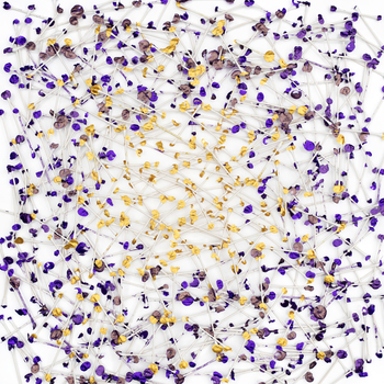 20161112191044-iyli_q-tip_connection-purple_gold_2