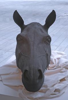 20161112233511-harumi_foster_-_dark_horse_1