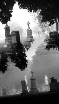 20161112235509-cemetery_crossings_10_copy