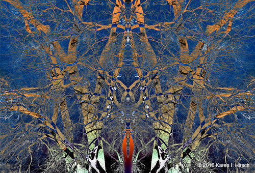 20161113042105-160419_sunset_tree_018_collage_mirror_lighten_r5_copy_copy