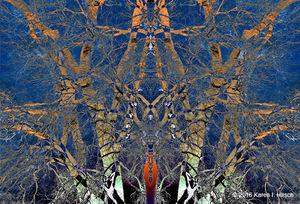 20161113042105-160419_sunset_tree_018_collage_mirror_lighten_r5_copy_copy