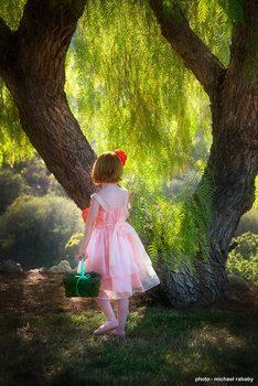 20161210191151-pink-dress-at-tree-406_1284