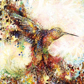 20170112120309-hummingbird_of_paradise_-_natural_warp_-_facebook