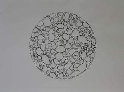 20170117193303-blastosys_1