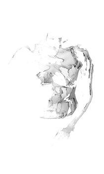20170206180157-torso3editweb