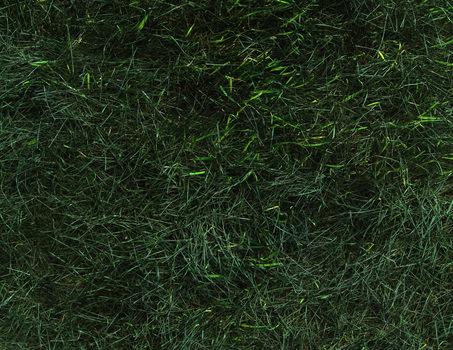 20170404171929-grass_painting__detail_horizontal