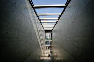 20170508102539-museum_der_moderne_salzburg_m_nchsberg1_wildbild