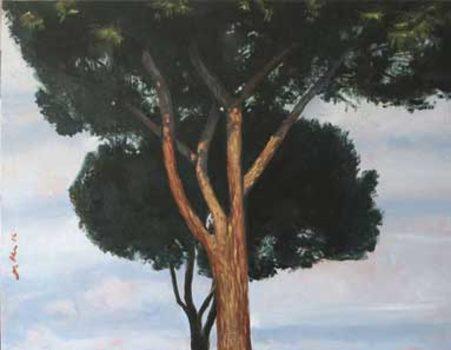 20170608005640-alberi