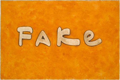 20170727220637-fake