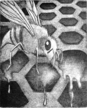 20170802164054-honey_trap_mezzotint_by_tania_beaumont