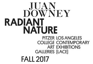 20170811154957-juan-downey-fall-2017-rgb