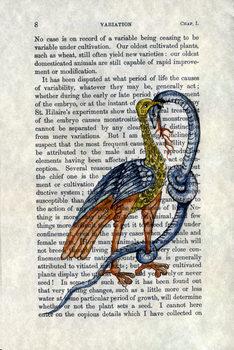 20170830095717-1a_bird_and_snake_a4440