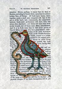 20170830095724-2a_bird_and_snake_a4_2441