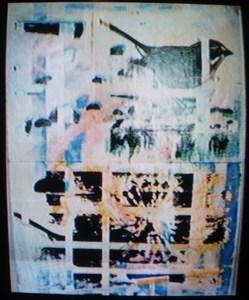 2006_rickys_disk_016