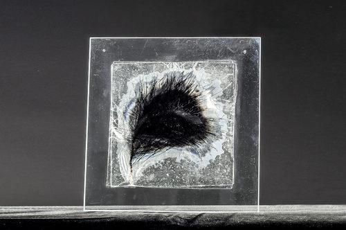 20171003042758-elina_bilous__glass_lost_wax_method_puppy__2_