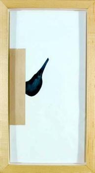 7_bubirds
