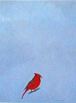 20171029221022-cardinal