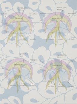 20171112231507-medusainblue