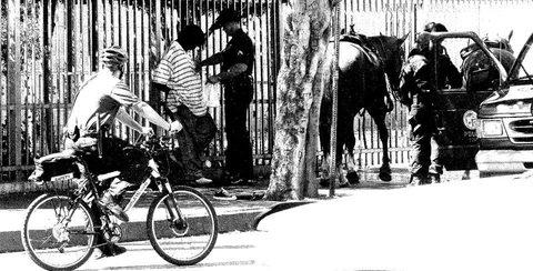 20171113124819-_arrest_many_cops_horses_bw_