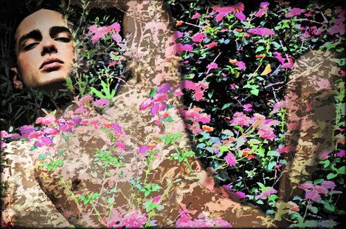 20171115212600-bed-of-flowers-by-john-waiblinger