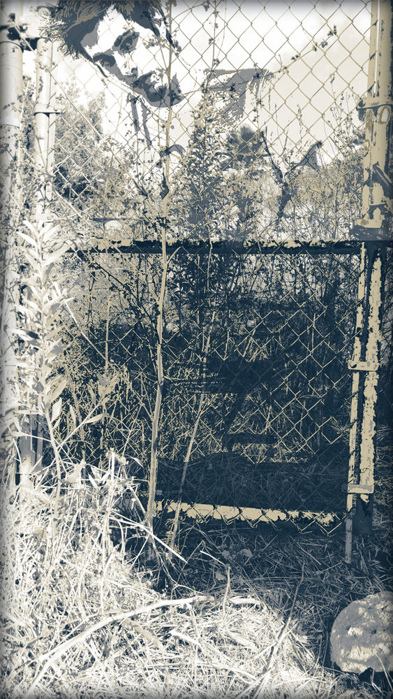 20171120190442-fences-2-by-john-waiblinger