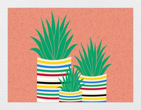 20171129150308-plants_on_wall