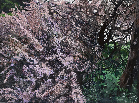 20171215185209-springbloom