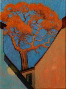 20171224165630-winter_oak_among_houses