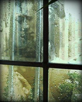 20171227212615-rain-kiss-by-john-waiblinger