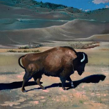 20180223024543-boyle-016__buffalo__oil_on_canvas__18x18_inches__2017