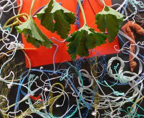 20180311192806-leaves_rope