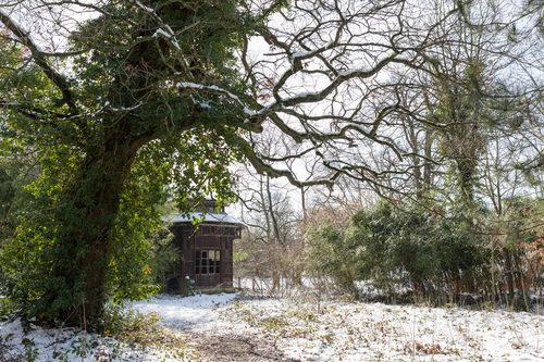 20180312024723-jardin-tropical-winter-05