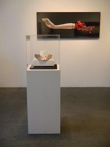 20180319114637-sarah_danays__golden_bough__solo_exhibition_at_robert_berman_gallery__los_angeles__spring_2014